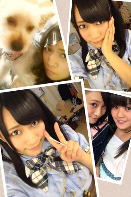 [画像:ichino130628]