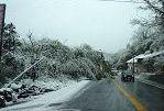 [IMAGE]大晦日雪