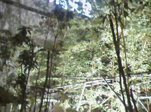 [IMAGE]温泉