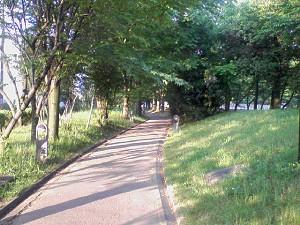 [IMAGE]遊歩道
